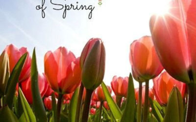 Spring is here!